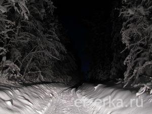 Дорога с Ветлана