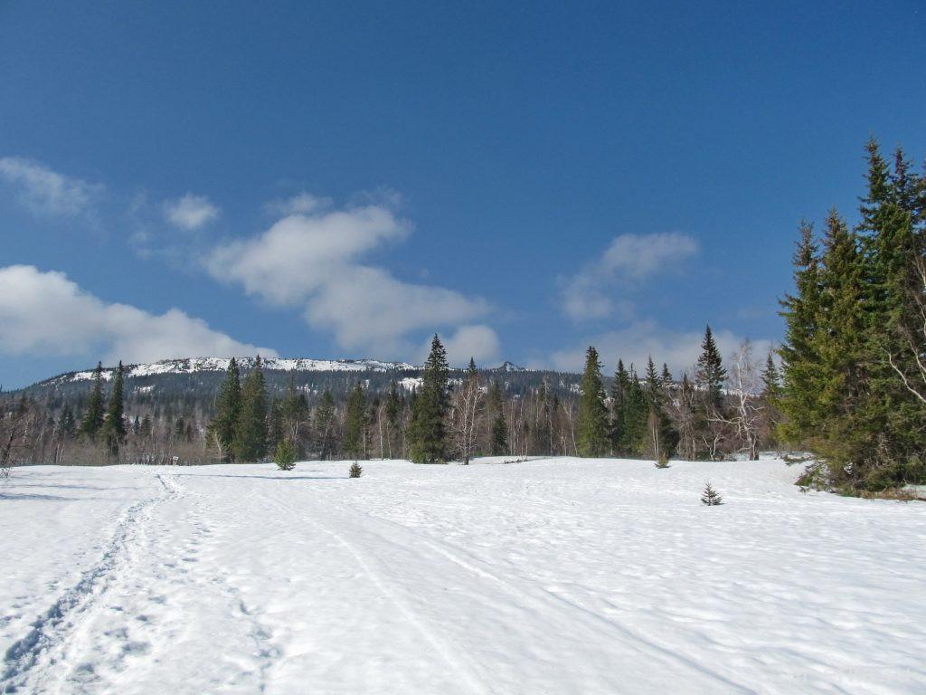 альпийские луга Зюраткуль