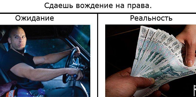 водительское удостоверение купить