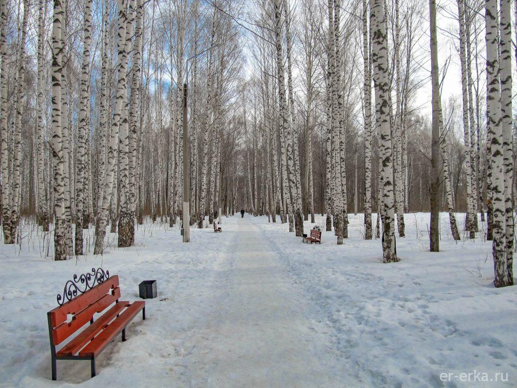Чайковский, парк